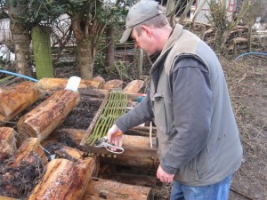 Volunteer Alex, making a garden gate
