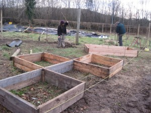 Raised beds in our new plant trails area