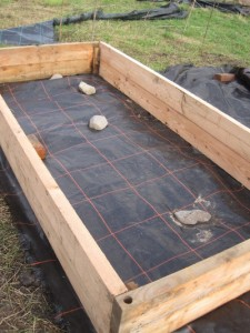 This 1.2m by 2.4m raised bed is 30 cm deep and ideal for growing veg