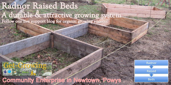 First draft of an advert for our raised beds