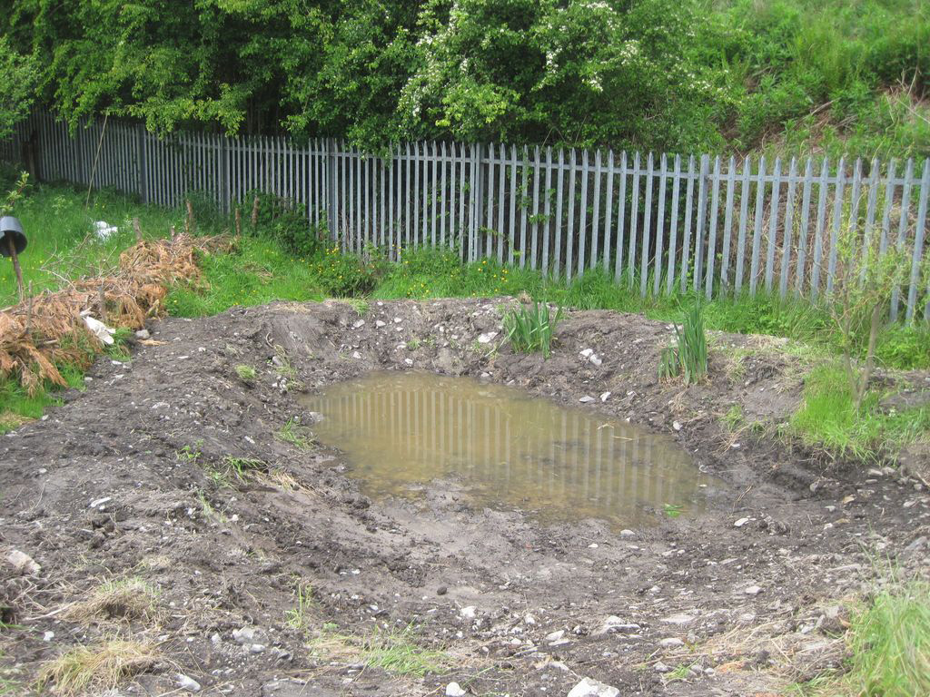 Pond at Pen Dinas slowly filling