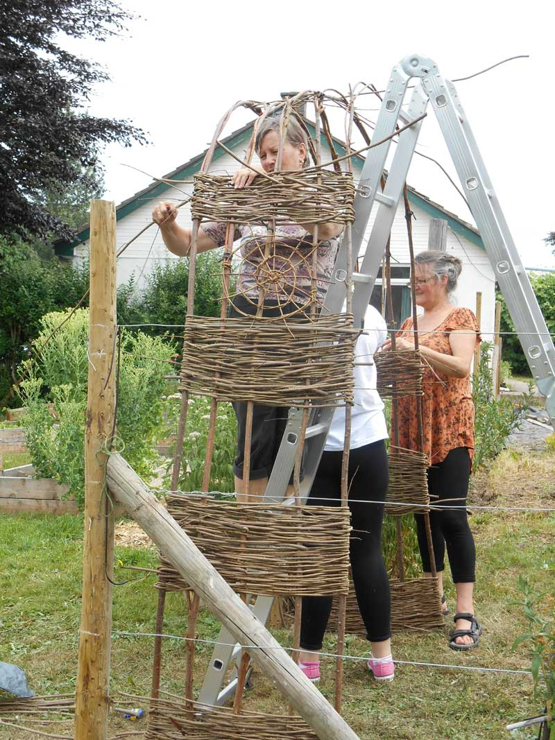 Weaving a willow arch as part of our preparing for growing course