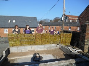 completed willow hurdles