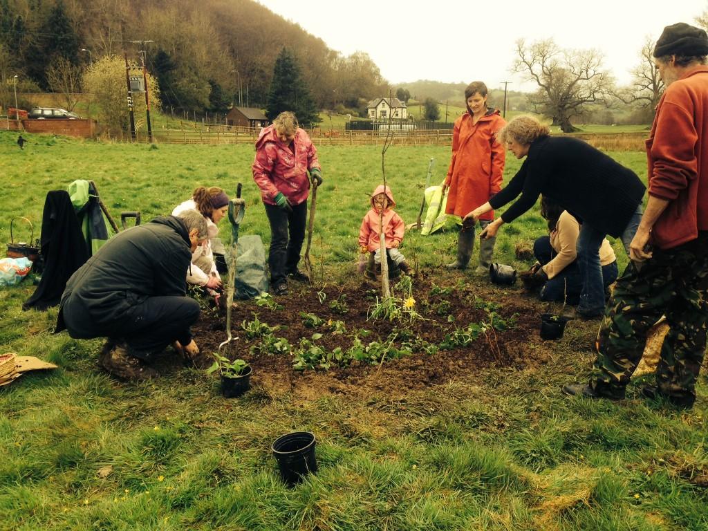 community garden planting pic