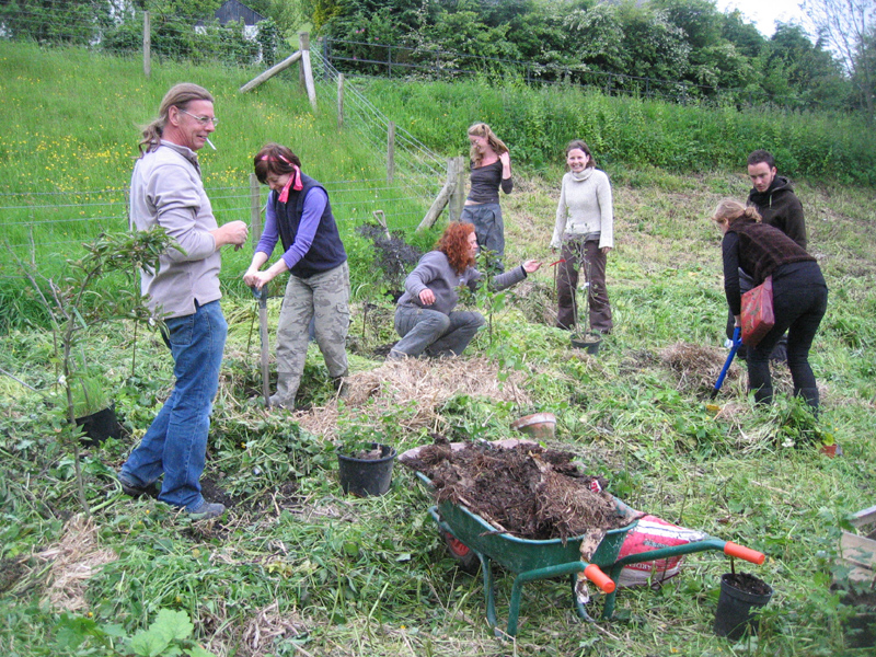 Planting the Dolydd Forest garden 2009